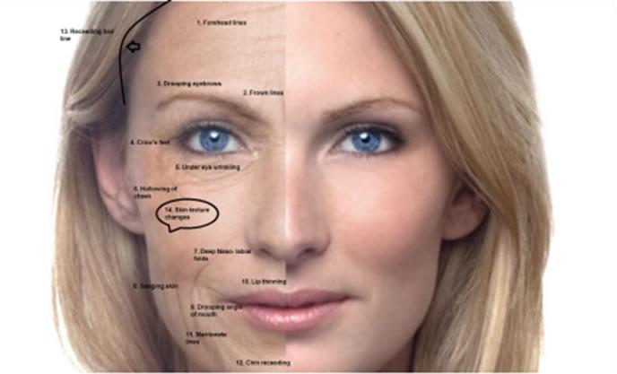 rejuvenecimento-facial-global_patricia-frico9